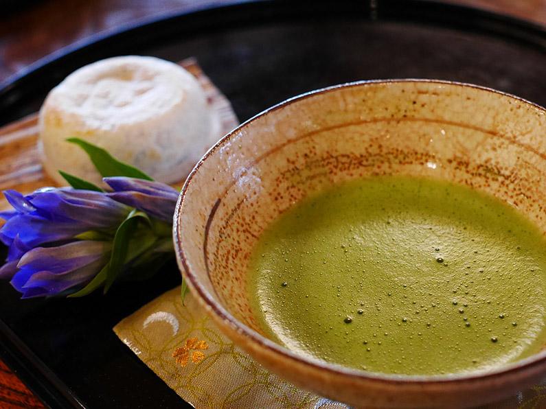 Matcha Tee Schale